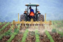 wsparcie rolników